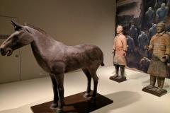 Keramikkrieger im Museum